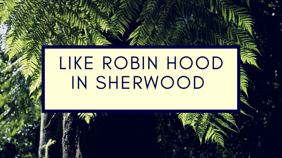 Robin-Hood-in-Sherwood
